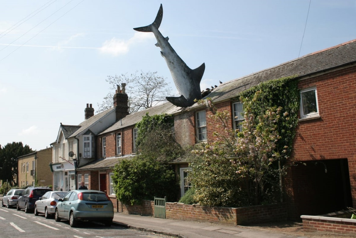 HEADINGTON-SHARK